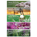 Birthday Bookmarks (10 PK)